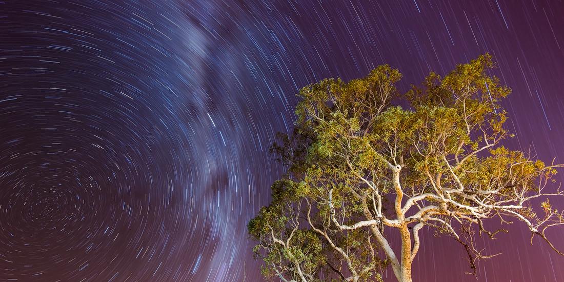 Night Sky, Karijini