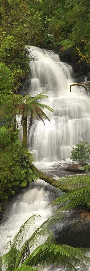 Triplet Falls, Victoria
