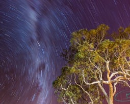 Karijini Night Sky