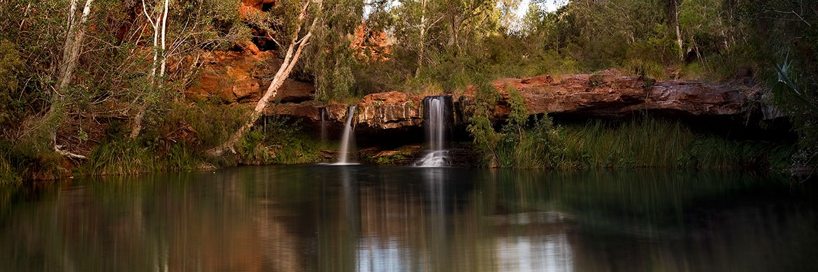Fern Pool, Karijini
