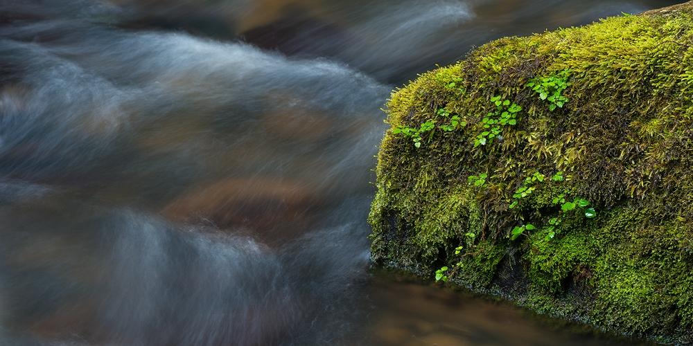 Beauchamp Falls, Victoria