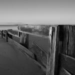 Phillip Island Photograph